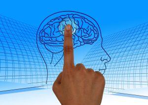 Abb. 1: Gehirn an (Quelle: pixabay, Lizenz: CC0)