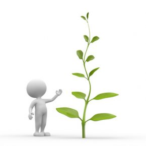 3d people - man, person with plant, fotolia.com