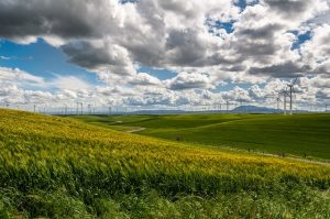 wind-farm-1209784_640